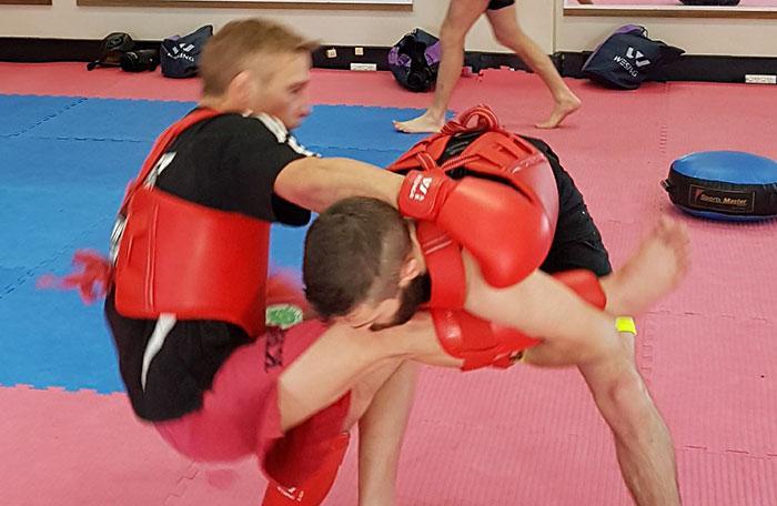 Mixed Martial Arts and Sanda - image sanda-mixed-martial-arts on https://www.krmas.com.au
