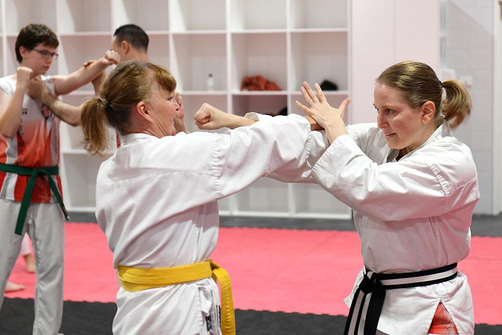 Newcastle Get Started Adults - image ladies-karate on https://www.krmas.com.au